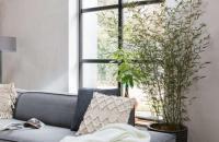 Nederlands design in huis