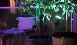 Jouw tuinverlichtingsplan