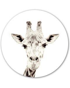 Magneetsticker Giraf