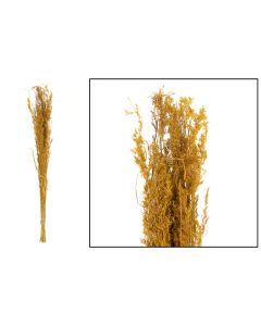 Alfonso grass 100cm 100gr Ocher