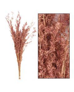 Alfonso grass 100cm 100gr Light pink