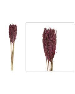 Plume reed long 105gr Burgundy