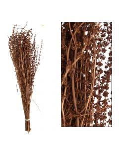 Palma grass 50-65cm 100gr Natural